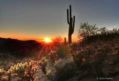Image detail for -Sunset at Saguaro National Park - Tucson, Arizona - Photograph at ...