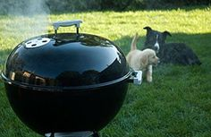 Weber Kettle---i love to grill but am no where close to be perfect at it...gonna work on my skills...