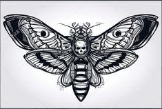 death head moth #wings