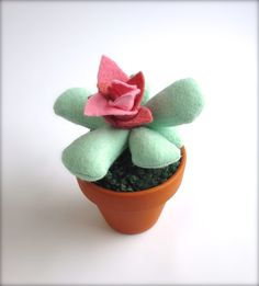 Un peu senti Succulent Cactus Pot usine par KatyPillingerDesigns