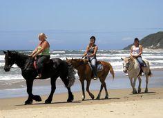 5 erilaista rannikkoreittiä Etelä-Afrikassa