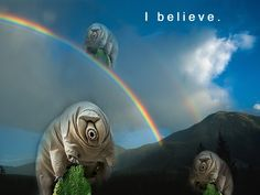 God bless the ************ water bear.