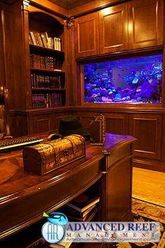 Mancave to bowling Home Aquarium, Aquarium Design, Aquarium Fish Tank, Saltwater Tank Setup, Saltwater Fish Tanks, Unique Fish Tanks, Cool Fish Tanks, Custom Aquariums, Fish Tank Wall