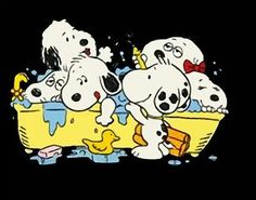 Snoopy and siblings...bathtime!