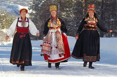 Telemarks-brides in Setesdalsheiene Telemark Folk Costume, Costumes, Traditional Outfits, Handicraft, Norway, Scandinavian, Old Things, Inspiration, Clothes