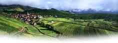 Bienvenido al sitio oficial de Turismo de Alsacia, en el este de Francia