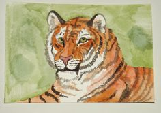 Tiger water colour postcard