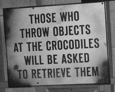 You don't want to be throwing stuff at the crocs