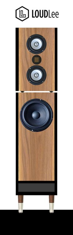 Speaker design with two separate modules for Bass and Monitors. Monitors use two point source speakers combined with an air motion tweeter.
