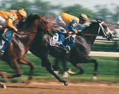 Winning Colors, only the third filly to win the Kentucky Derby, defeated both 1987 Champion 2 year-old colt Forty Niner and 1988 Champion 3 year-old colt Risen Star in the Kentucky Derby.