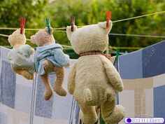 today they went deep sea diving...and then they hung out!!!!!  (my Momma used to wash my bears like this!)