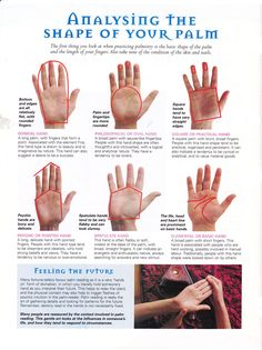 Analysing the shape of your palm