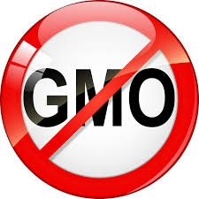 Image result for say no to gmo foods