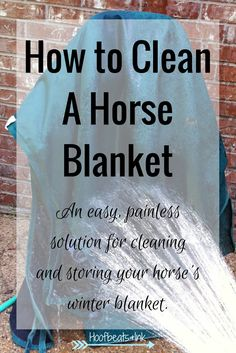 How to clean a horse blanket. An easy, painless solution for cleaning and storing your horse's winter blanket. via Hoofbeats and Ink
