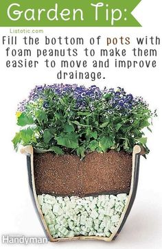 DIY Tips for Moving Heavy Potted Plants - Are your yard planters too heavy to move? Use packing peanuts to cut the weight in half and improve drainage. very clever idea! Container Plants, Container Gardening, Gardening Tips, Organic Gardening, Container Flowers, Balcony Gardening, Kitchen Gardening, Outdoor Projects, Garden Projects