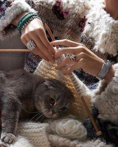 """""""Sıcacık yün dokular ve ışıltıyı bir üst seviyeye taşıyan mücevherlere, varlığıyla huzur veren kediler eşlik ediyor. Mücevher ve saat özel bölümü, Vogue…"""""""