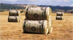 MadalBo: Argentina. Monsanto, los clanes Kirchner y Macri y...