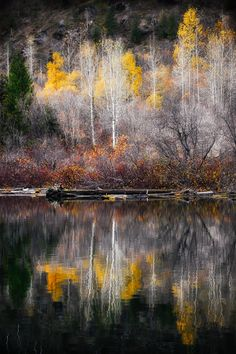 Photographic Print: Autumn Reflection by Ursula Abresch : Beautiful World, Beautiful Places, Beautiful Pictures, Foto Nature, Autumn Scenes, Abstract Watercolor, Nature Photos, Mother Earth, Beautiful Landscapes