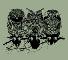 3 Owls on an Olive Background