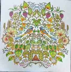 Enchanted Forest Coloring Johanna Basford