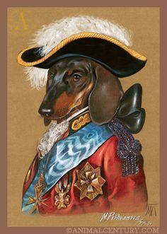 The Chevalier Dachshund