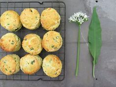 I am a little bit in love with garlic and when I found a mass of wild garlic growing on Charles farm in Wales I couldn't wait to start cooking with it. I had heard about making pesto but coul… Wild Garlic Pesto, Garlic Cheese, Cheese Scones, Savory Scones, How To Make Pesto, Making Pesto, Garlic Uses, Garlic Recipes, Love Food