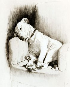 """Cecil Aldin (1870-1935) was a British illustrator who loved to draw dogs.  He illustrated a book called Sleeping Partners featuring his dogs """"Cracker,"""" a white bull terrier, and """"Micky,"""" a dark Irish"""