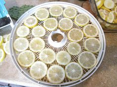 The Homestead Survival - How to dehydrate Lemons and their uses.