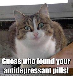 pills032013 funny pictures