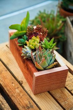 Planter Box Redwood great for by thegrowingwall on Etsy - Modern Succulents In Containers, Cacti And Succulents, Planting Succulents, Diy Wooden Planters, Wood Planter Box, House Plants Decor, Plant Decor, Hydroponic Farming, Hydroponics