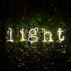 Seletti Neon Light