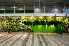 Learn how a vertical garden can make your home greener and gorgeous!  http://julivignette.tumblr.com/post/46182841405/art-of-plants-and-vertical-gardens#  #verticalgarden #ecodesign #greenart #indoor #TheGreenAge #greensolution