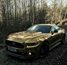 In this article, you can see Full HD & 4K Gold Cars wallpapers for Desktop. On top of that, these Gold Cars wallpapers are the full-screen desktop wallpaper. Moreover, all wallpapers are high-resolution wallpapers for your pc. For more Gold Cars PC wallpapers, visit my website. Shelby Mustang, Ford Mustang, Dodge Camper Van, Honda Cb, Jet Ski, Nissan Skyline, Stiles, Glasgow, Polar Bear On Ice