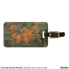 Colorado Scarlet Paintbrush Tags For Bags