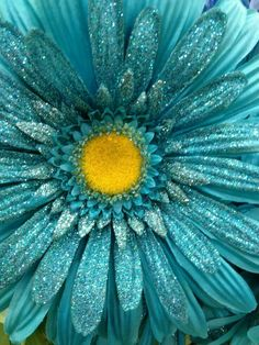aqua flower discovered by 𝓜𝓲𝔃𝓴𝓪𝔂𝓽 on We Heart It Shades Of Turquoise, Turquoise Color, Teal Colors, Shades Of Blue, Colours, Turquoise Flowers, Blue Flowers, Montage Photo, Gerbera