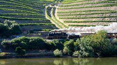 Comboio histórico do Douro arranca a 6 de junho e com mais viagens em 2015 - Observador