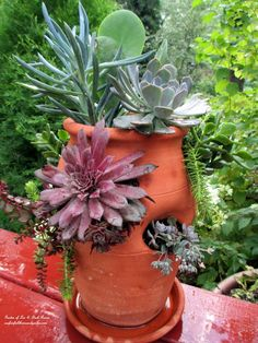 DIY Project : Succulent Planter Pot   http://ourfairfieldhomeandgarden.com/diy-project-succulent-planter-pot/
