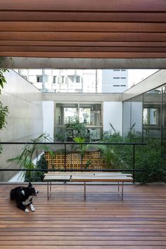 Love the view from inside, to outside and back in again. The greenery makes it look tranquil.