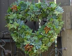 Succulent Live Wreath, Heart Succulent Wreath - Valentines Day Heart Shaped Wedding Succulent Wreath. $95.00, via Etsy.