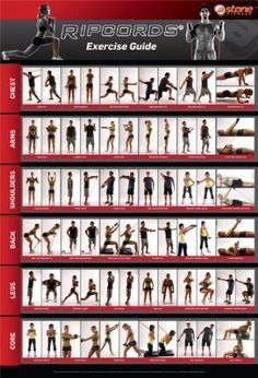 Amazon.com: Ripcords Exercise Guide Poster | Resistance Band Workout Chart: Sports & Outdoors