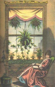 Victorian, indoor fern garden, a good place to read