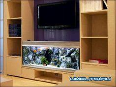 аквариумы в интерьере гостиной