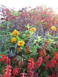 Longfellow Gardens, Minnehaha Falls Park