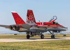 Royal Canadian Air Force McDonnell-Douglas CF-188A Hornet