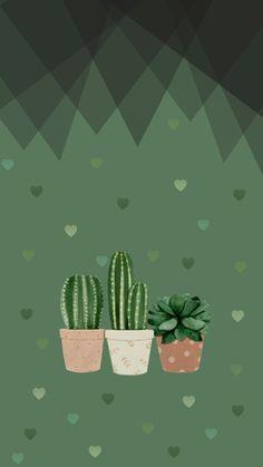 Cactus #green #nature
