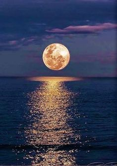 January first full moon of the year. Known as the Wolf Moon. Moon Photography, Landscape Photography, Ciel Nocturne, Image Nature, Moon Images, Full Moon Pictures, Shoot The Moon, Beautiful Moon, Moon Art