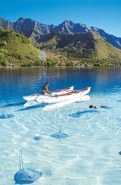 Bora Bora Island, in French Polynesia _ Isola Bora Bora, in Polinesia Francese Places Around The World, The Places Youll Go, Places To See, Dream Vacations, Vacation Spots, Vacation Travel, Italy Vacation, Asia Travel, Kayak Vacations