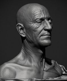 Some Anatomy Studies Head Anatomy, Anatomy Study, Body Reference, Anatomy Reference, Male Face, Male Body, Old Man Face, Human Anatomy For Artists, Zbrush Character