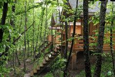 Kocaeli Yuvacık Dağ Evi, Kocaeli Yuvacık Doğa Oteli - 1052