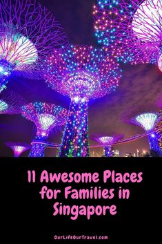 Are you looking for the best things to do in Singapore with family? There are plenty of activities in Singapore with kids. Read our travel guide to learn what activities to do downtown like the ArtScience Museum, what hotel has Gardens by the Bay that you can explore, and where to find Chinatown! #familytravel #adventure #singapore #asia #familyvacation Singapore With Kids, Singapore Zoo, Singapore Travel, Brazil Travel, Asia Travel, Budget Travel, Travel Guide, Activities In Singapore, Singapore Attractions